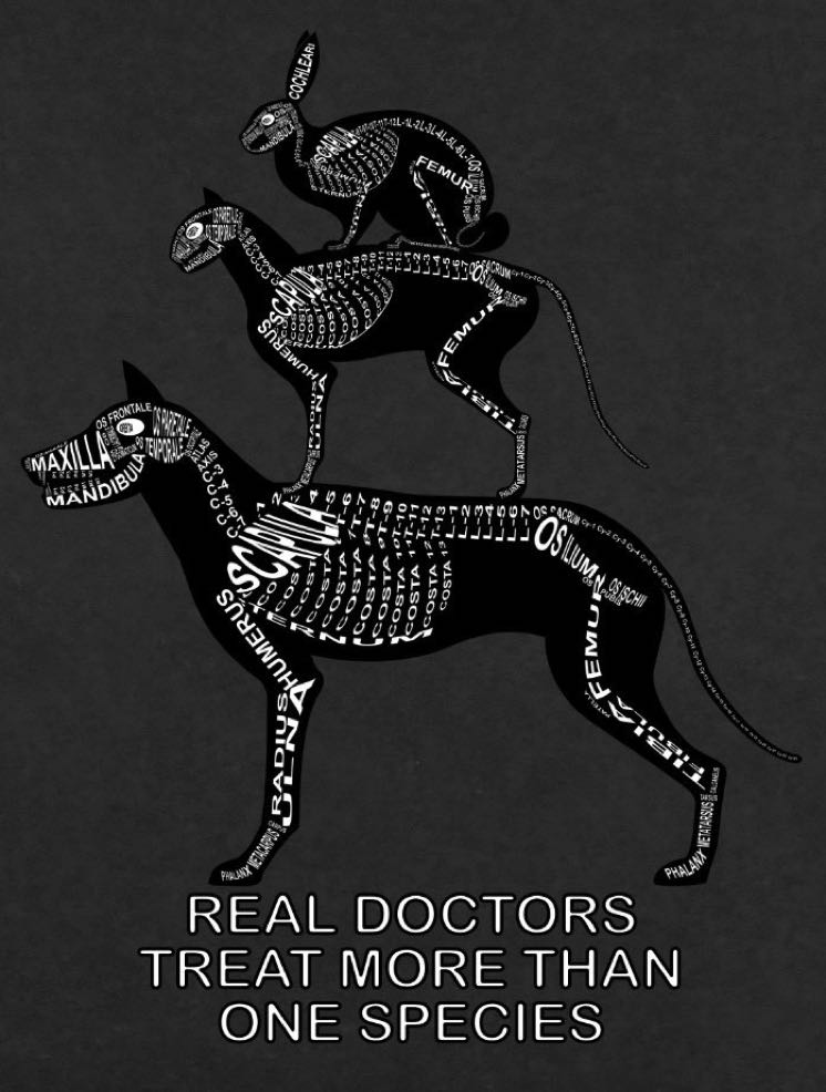 Real Doctors Treat more than one Species: Heimtiere Detail Skelett mit lateinischen Bezeichnungen der Knochen - T-Shirts für Tierarzt - Hund, Katze, Kaninchen
